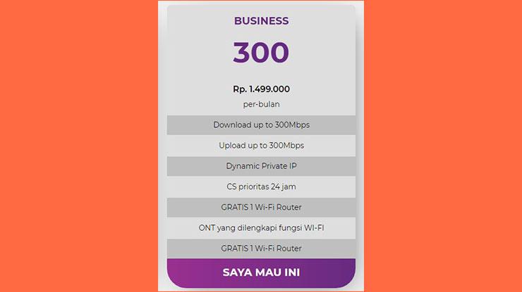 Business Pro 300 Mbps