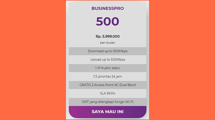 Business Pro 500 Mbps