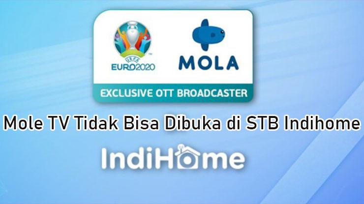 Mola TV Tidak Bisa Dibuka di STB Indihome